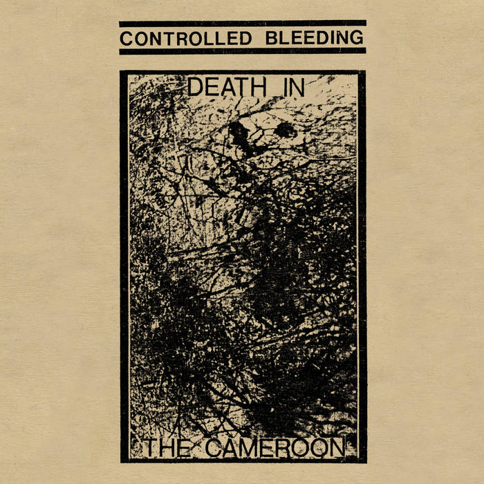 Controlled Bleeding - Cameroon